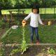 Students Gardening